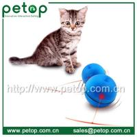Cheap Funny Christmas Gift Interactive Cat Toy, LED Cat Ball for sale