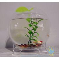 Cheap Plastic modern acrylic fish tank for sale