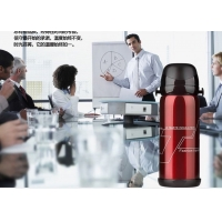Cheap BSCI Thermos Vacuum Insulated Bottle for sale
