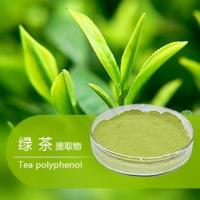 China Organic Green tea extract, with active ingredients EGCG, L-theanine, Tea Polyphenol instant green tea extract powder on sale