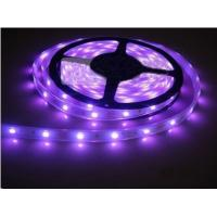 Cheap Promotional led Strip light 3528 / 5050 SMD RGB LED lighting with Remote Controller for sale
