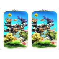 Cheap PMS Cool 3D Fridge Lenticular Magnets 3D Refrigerator Magnets for sale