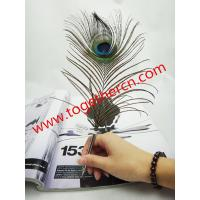 Cheap good qualiity low price made in china feather pen for sale