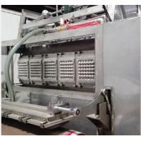 Cheap Durable Egg Tray Moulding Machine For Industrial Molded Fibre Products Packaging for sale