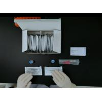 Cheap Diagnostic kit Independent IgM and IgG results Antibody Lateral Flow CFDA NMPA FSC CE TUV for sale