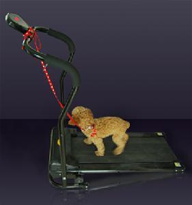 Cheap Auto Pet Treadmill for sale