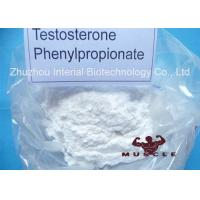 Medicinal Fat Burning Steroids Testosterone Propionate For Women CAS 1255-49-8