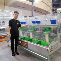 Cheap industrial poultry farming equipments female rabbit cage/commercial rabbit cage for sale for sale