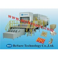 Cheap top quality egg tray machine for sale