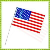 Cheap Hot PE Hand Flag for sale