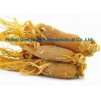 China Nourishing Herbal Extract Powder Light Yellow Panaxoside Red Ginseng Extract on sale
