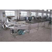 Cheap 500Kg / H Fruits And Vegetable Processing With Chile Washer Machine For Spinach, Celery for sale