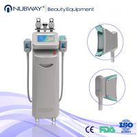 Cheap New product Made in China!!cyolipolysis slimming machine used for beauty clinic for sale