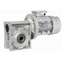 Double Shaft Mounted Nmrv Worm Gear Reducer , Pre-Stage Reduction Gear Unit