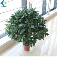 China Ornamental Artificial Bonsai Tree Plastic Leaf Evergreen Type For Tea House Decoration on sale