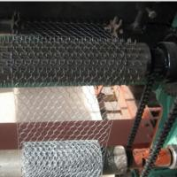 Cheap Electro Galvanized Chicken Wire Netting for Wall Plastering and Building for sale