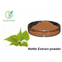 China Free Sample Herbal Plant Extract Medicine 1% Silica Nettle Extract Powder on sale