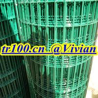 Cheap Welded Wire Mesh,PVC welded mesh,Stainless Steel Welded Mesh for sale