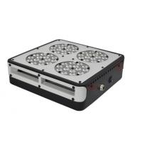 China 130W 2500lm High Power LED Plant Grow Lights Red / Blue LED for Medical Plant Herbs on sale