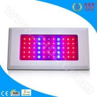 Cheap 55*3W LED Grow Light for Flowers, Garden, Greenhouse, Fruits for sale