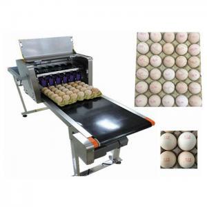 High Speed Food Inkjet Printer / Edible Printing MachineFor Whole Disk Eggs