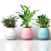 Cheap Speaker Mini Home Smart Plant Toy light music Smart Touch Plant Piano Music Playin With  from grgheadsets.aliexpress.com for sale