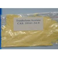 Most Powerful Anabolic Steroid , Trenbolone Acetate CAS NO 10161 - 34 - 9 For Body Building