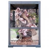 Knock Down Type Glass Terrariums RK0209 400X400X600MM with SLIDING DOORS