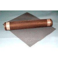 China PTFE coated fiberglass mesh on sale