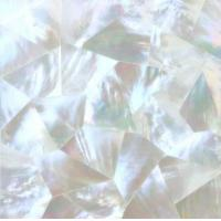 Cheap Mother of Pearl Shell Tile wholesale