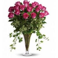 China Dreaming in Pink - Long Stemmed Pink Roses [T62-1A] on sale