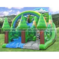 Cheap Sports Inflatable Slide T-379 wholesale