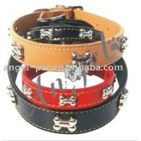 Leather Dog Collars (24)  Leather Dog Collar With Steel Bone  - AC-01