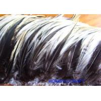 Cheap FEATHER ITEMS Product HF082 [Order it!] for sale