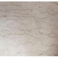 Cheap Shell Beige Marble Tiles Polished For Interior Flooring for sale