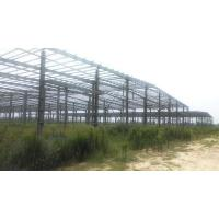 Steel Structure/Prefabricated Steel Building/Steel Struture Workshop