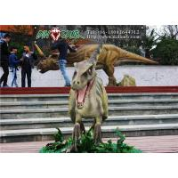 Buy cheap Simulation dinosaur series Deinonychus from wholesalers
