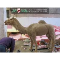 Buy cheap Simulation animal series Simulation Camel from wholesalers