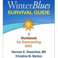 Cheap New Winter Blues Survival Guide for sale