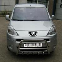 China CITROEN Berlingo Mk2 Front Bull-Bar With Bottom Grille FGBM01 on sale
