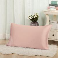 Cheap Taihu snow plain dyed mulberry silk pillow case for sale
