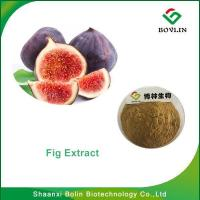 Cheap Fig Extract /Bolin Supply High Quality Natural Fruit Additive Fig Powder with Free Sample for sale