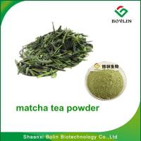 Cheap Matcha Powder/Hot Sale Natural Weight Lossing Matcha Green Tea Powder with Best Quality for sale