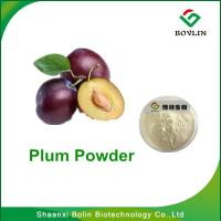 Cheap PlumPowder/Good Quality Beverage Additives Plum Fruit Powder with Good Water Soluble / Free Sample for sale