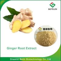 Cheap GingerRootExtract/Best Selling High Quality Ginger Root Extract with Free Sample for sale