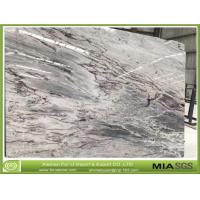 Chinese New Marble Snowland Marble Slabs