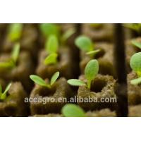 China Agricultural Grow Cubes Rockwool Hydroponic on sale