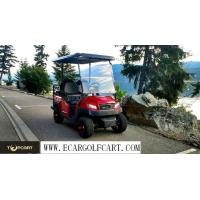 Cheap Special Design Electric Car Golf Cart , Multi Functional Motorised Golf Trolley wholesale