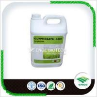 China Non-selective Herbicide Glyphosate 360g/L SL IPA salt on sale