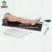 Cheap Bone puncture and femoral vein puncture training model for sale
